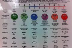 universal pain ASSessment tool